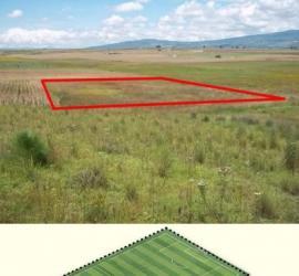 hectarea.jpg